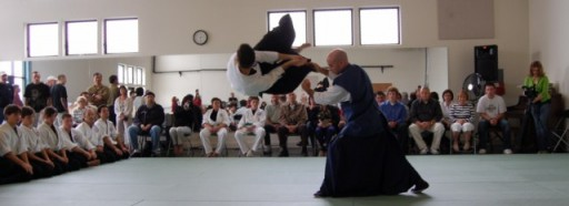 Seibukan Jujutsu Martial Art Kancho and Adam long